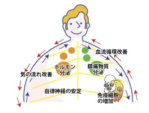 はじめの一歩通信Vol17〜はりの効果〜