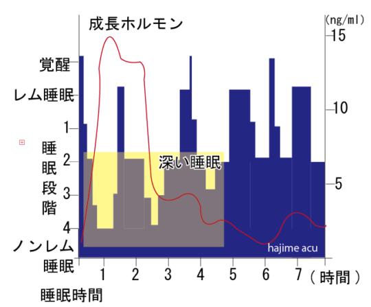 はじめの一歩通信vol.34〜睡眠〜