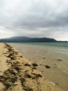 出張診療in石垣島