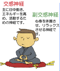 はじめの一歩通信Vol16〜自律神経を鍛えて豊かな人生を!