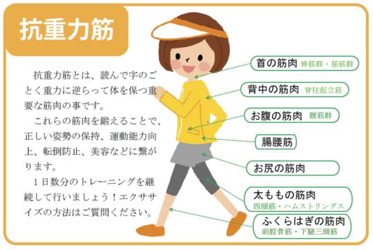 はじめの一歩通信vol.29〜カラダの機能を衰えさせない生活〜