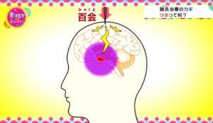 東洋医学 ホントのチカラ〜科学で迫る 鍼灸・漢方薬・ヨガ〜